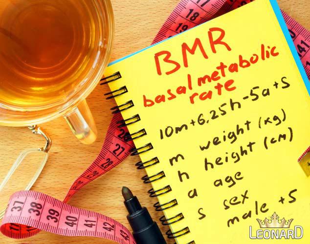 محاسبه BMR (میزان کالری مصرفی روزانه)